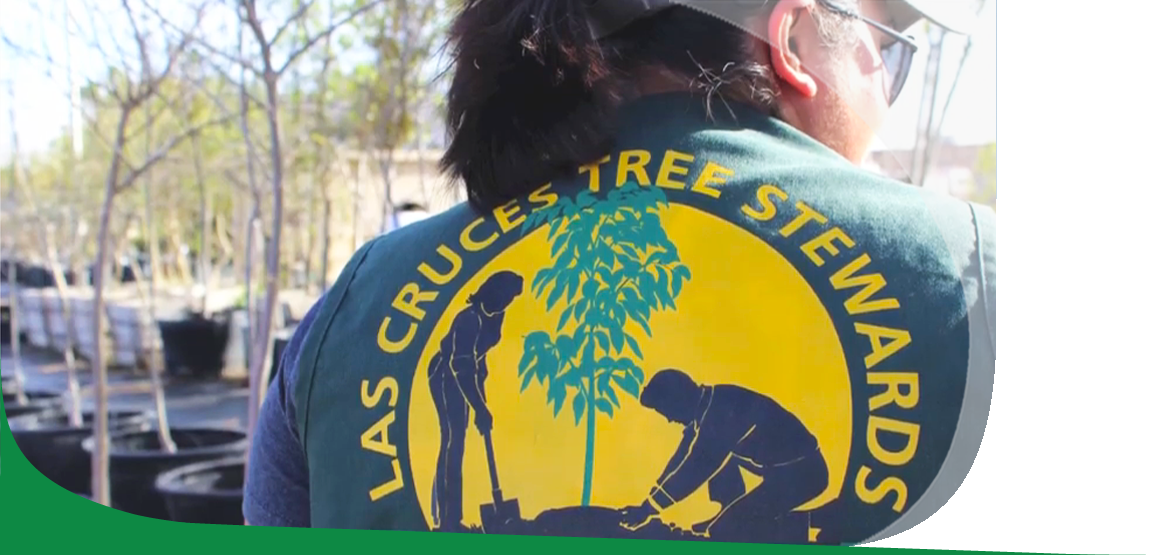 Person wearing a Las Cruces Tree Steward shirt